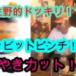 ★ウナちゃんマン★  サングラスと帽子の効果