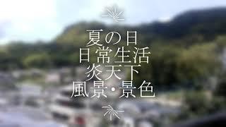 【風景・景色】日常ルーティン サングラス男の様々な出来事
